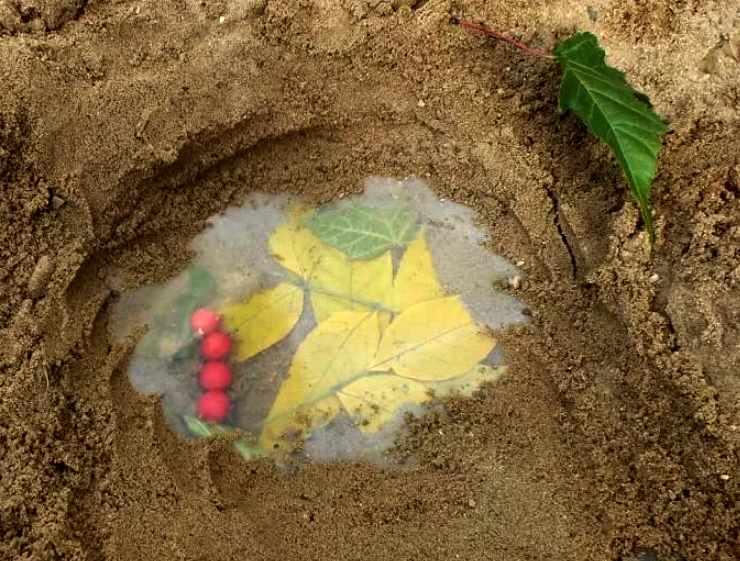 секретик в песке